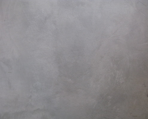 Seattle Venetian Plaster Modern Concrete Plasters Soft Gray Matte Concrete Plaster modern contemporary urban seattle